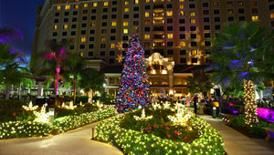 Rosen Shingle Creek® Christmas Decorations